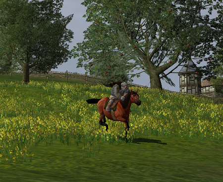horseriding.png