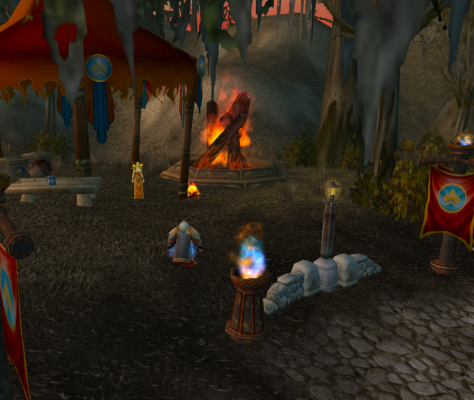 The Alliance flamewarden and bonfire in the Dustwallow Marsh