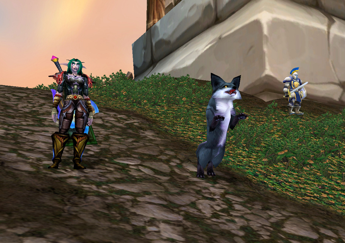 The Hot New Wow Hunter Pet The Ancient Gaming Noob