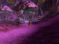 Morban Purple