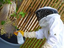 Anti-Bee Spray