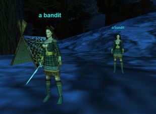Female bandits