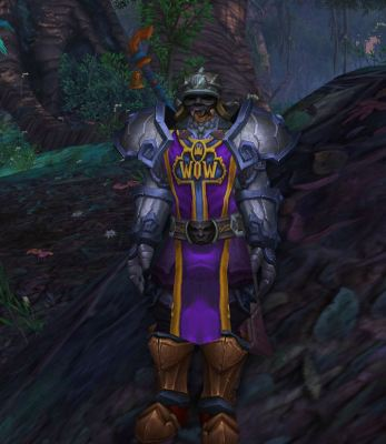 9th Anniversary Tabard