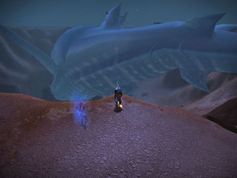 That is a big, dead whale shark