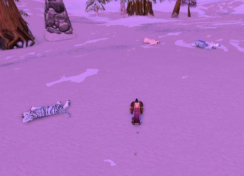 Dead frostsabers everywhere