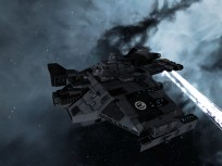 Blackbird taking heat