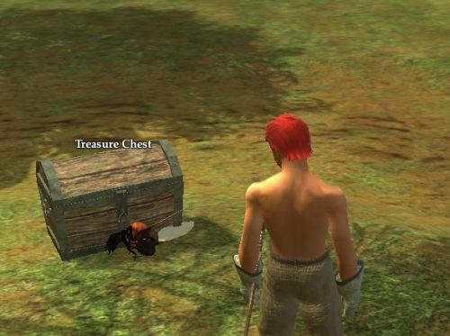 Still trying to figure out where that bee was hiding the chest he dropped...