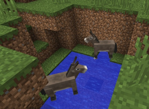 Donkeys stuck in a hole
