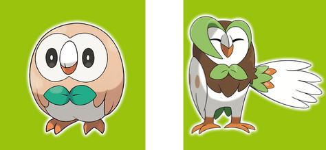 Owlet to Owl