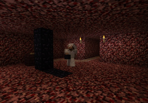 Aaron building the portal in the nether