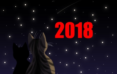 Image result for new year's predictions 2018